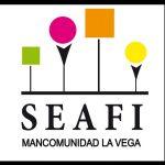 banner_seafi_2
