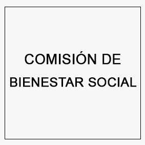 comisión de bienestar social