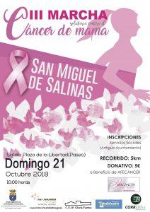 Cartel marcha solidaria cáncer de mama